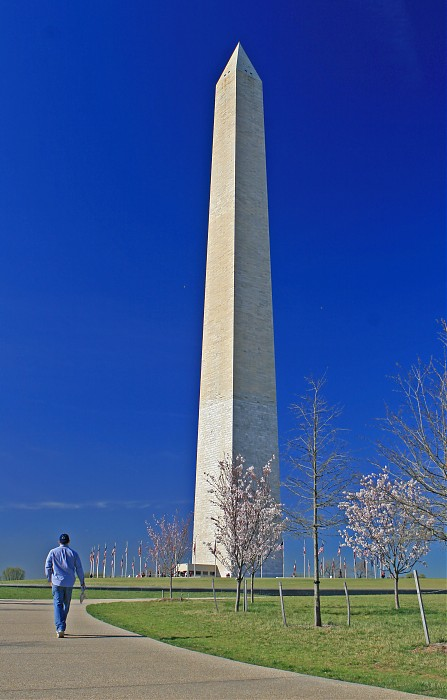 photoblog image Face of the Washington Monument #2